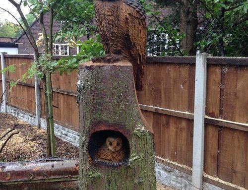 Stylised Tawny Owl and baby