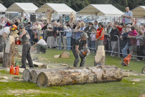 Speed Carving - English Open Chainsaw Carving Competition