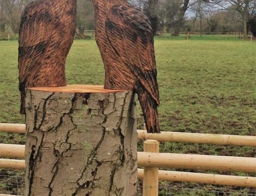 Tawny Owl and an Eagle Owl Chainsaw Sculpture